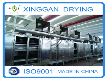 Belt Drying Equipment for Plums